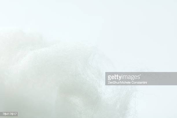 Cotton against white background, extreme close-up