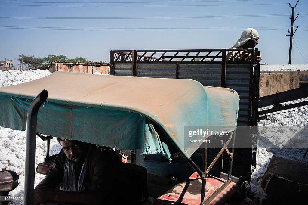 Cotton is offloaded from a truck at a processing plant in Mathania, in the district of Jodhpur in Rajasthan, India, on Monday, Oct. 29, 2012. Cotton shipments from India, the world's second-largest grower, are set to tumble, forcing the government to make record purchases to stem a slide in prices. Photographer: Sanjit Das/Bloomberg via Getty Images