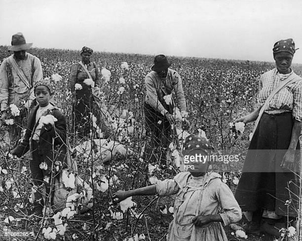 Cottonpickers at work Texas circa 1925
