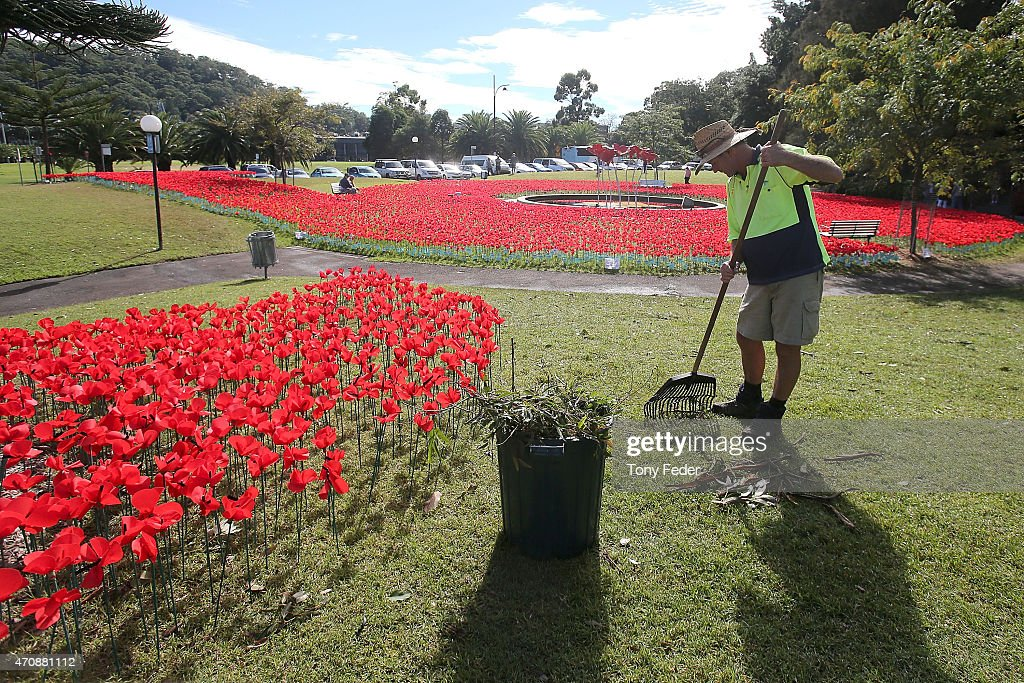 A Council worker cleans up debris from the storm at the Gosford Cenotaph in preparation for Anzac Day on April 24, 2015 in Gosford, Australia. Gosford City and Wyong shire have official been declared disaster zones, due to the damage caused by the worst storms to hit the region in decades.