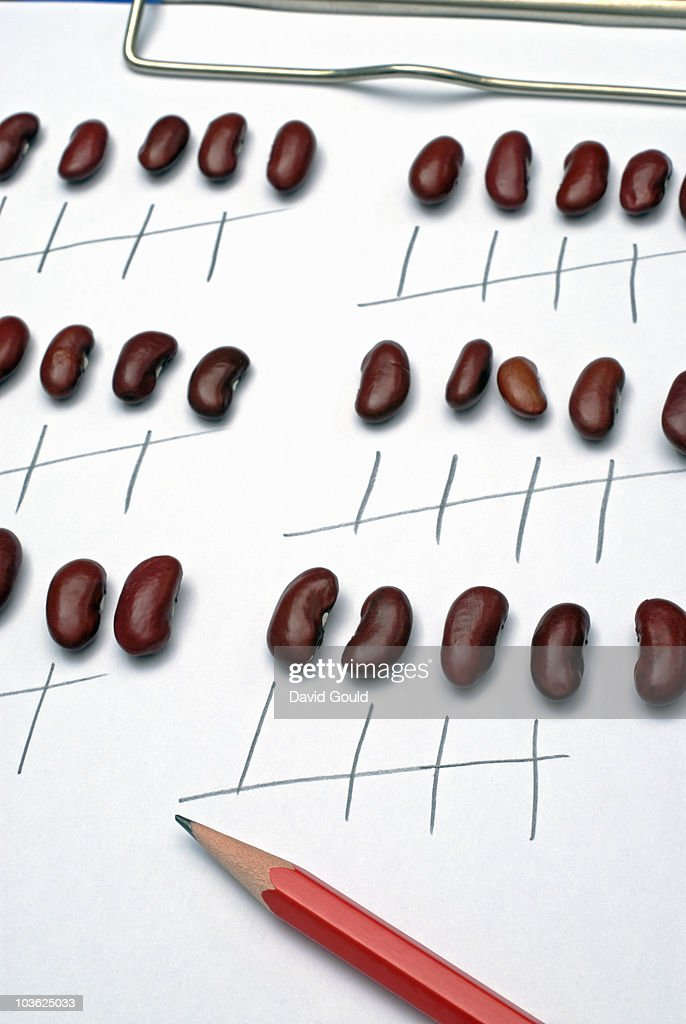 Counting beans : Stock Photo