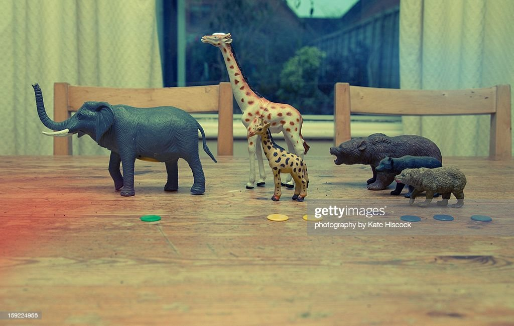 Counting toy animals