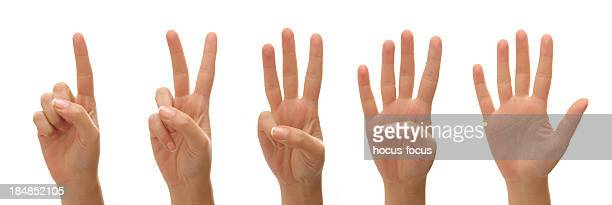 Counting woman hands