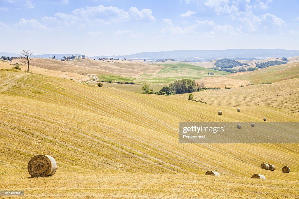 Country in Tuscany : Stock Photo