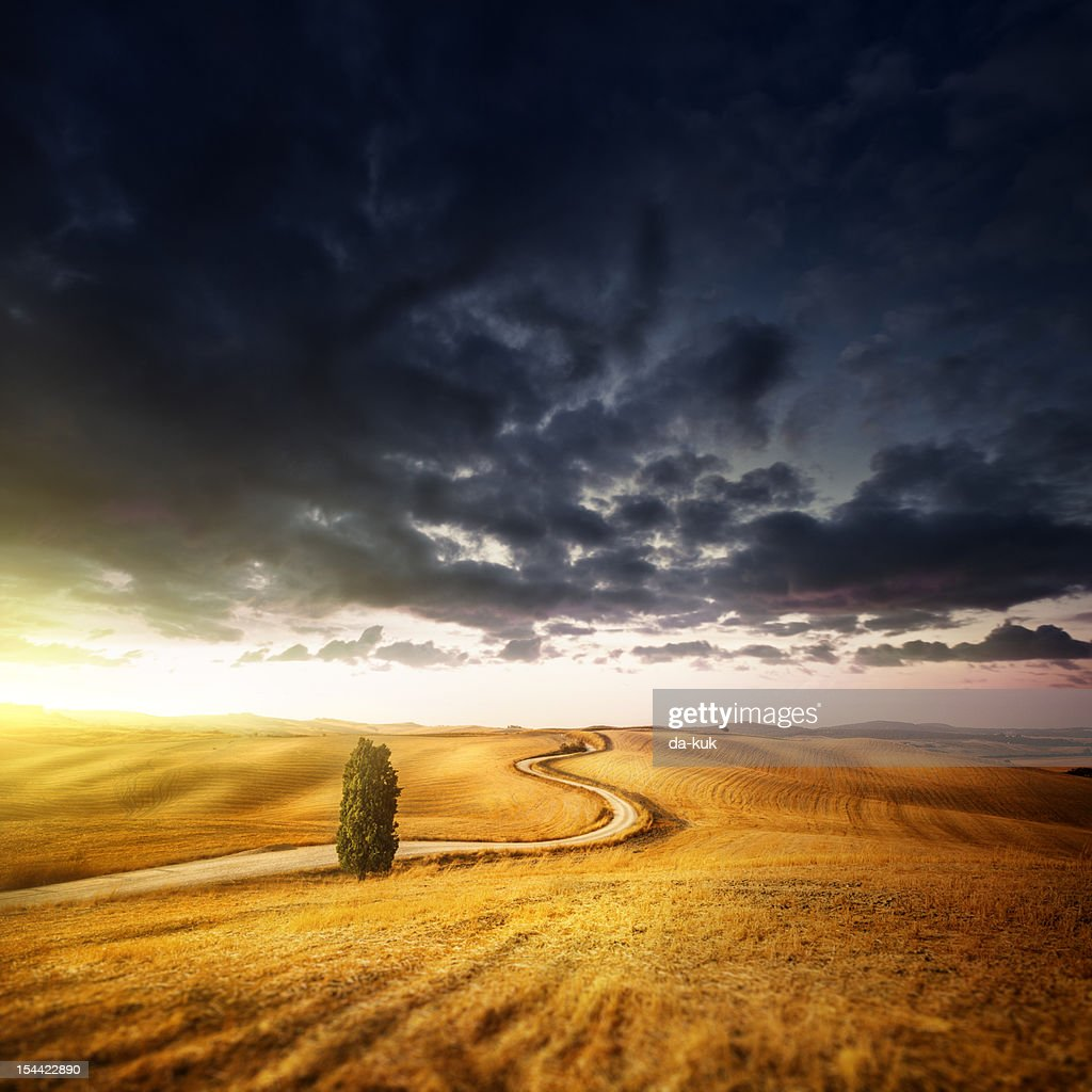 Country Landscape - fields in the sunset sky