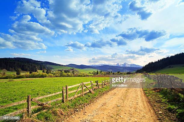 Country landscape - road between green fields