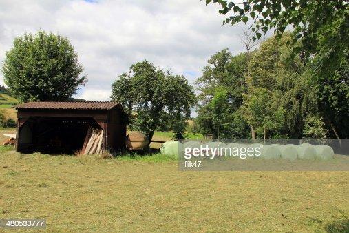 Land Landschaft mit Plastik eingewickelt Runde hay bales : Stock-Foto