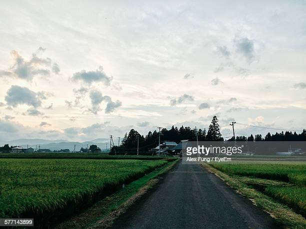 Country Road Along Field