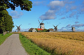 Country road lined by trees and field. Old windmills in background. Cloudy sky and soft