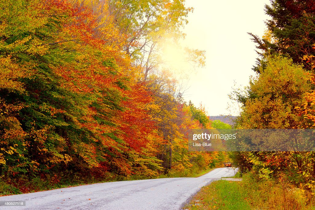Country Road in Fall, Vermont : Stockfoto