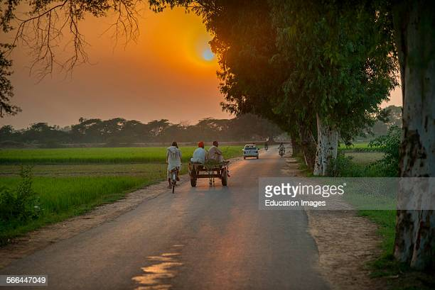 Country Road Lahore Pakistan