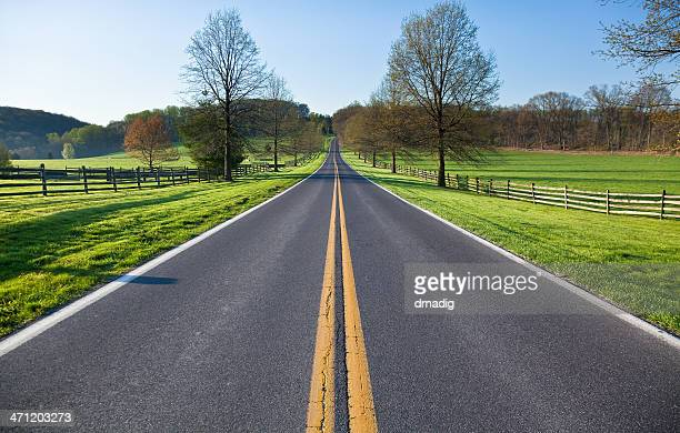 Country Road on a Spring  Morning