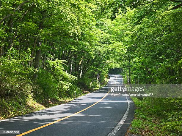 Country Road. Saihaku, Tottori Prefecture, Japan
