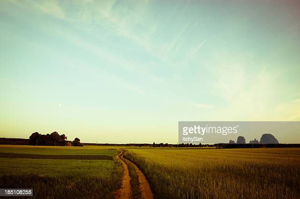 Country road through rural landscape