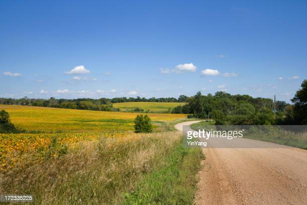 Country Road with Rural Farm Field Landscape, Minnesota, Midwest USA