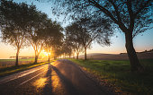 Country road on sunrise time near Pannonhalma, Hungary