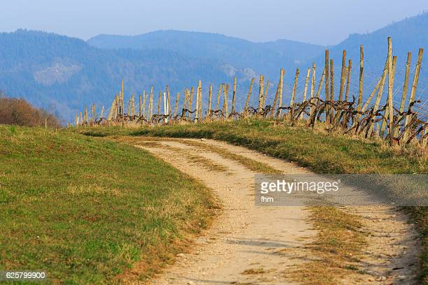 Country way with mountains in the background (Baden-Württemberg, Germany)