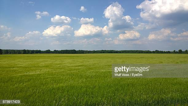 Countryside Landscape Against Blue Sky And Clouds