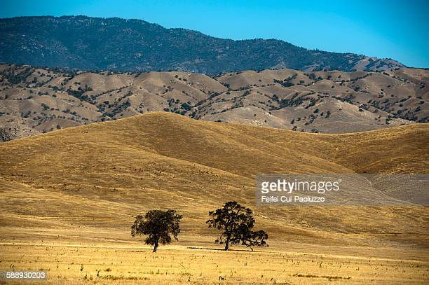 Countryside landscape at Arvin Kern County