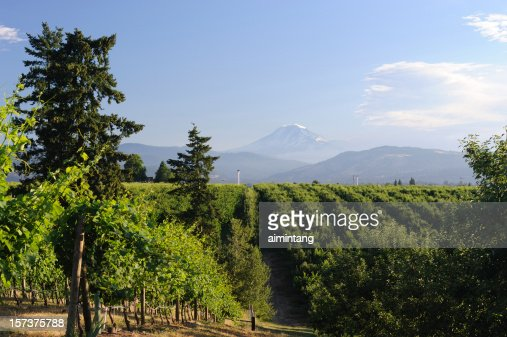 Countryside of Hood River