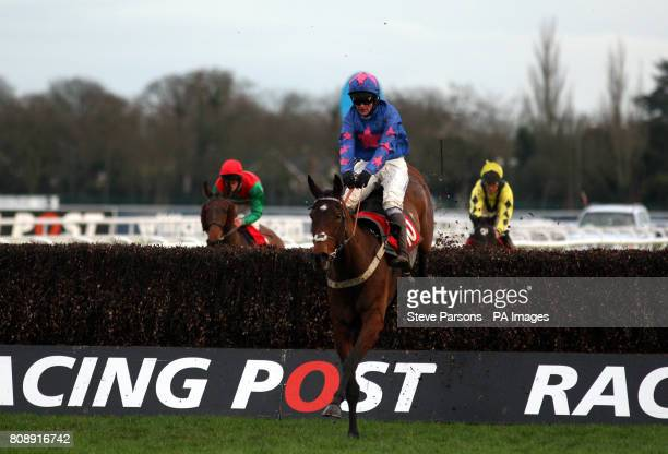 Coup Royale ridden by Joe Tizzard wins the Download Racing Post iPhone And Android Apps Handicap Chase during the Racing Post Chase Day at Kempton...