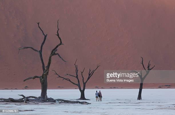 Couple among dead trees in the desert.