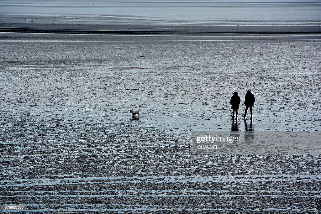 A couple and a dog on the beach Brittany