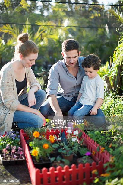 Couple and son with miniature garden on allotment