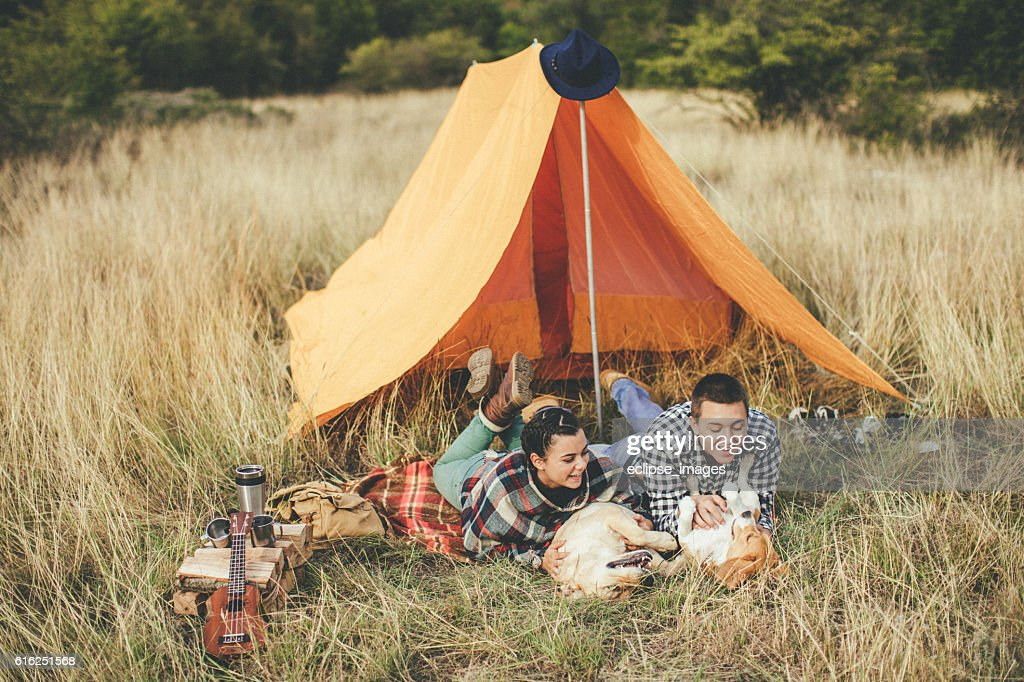 Couple camping and playing with dogs : Stock Photo