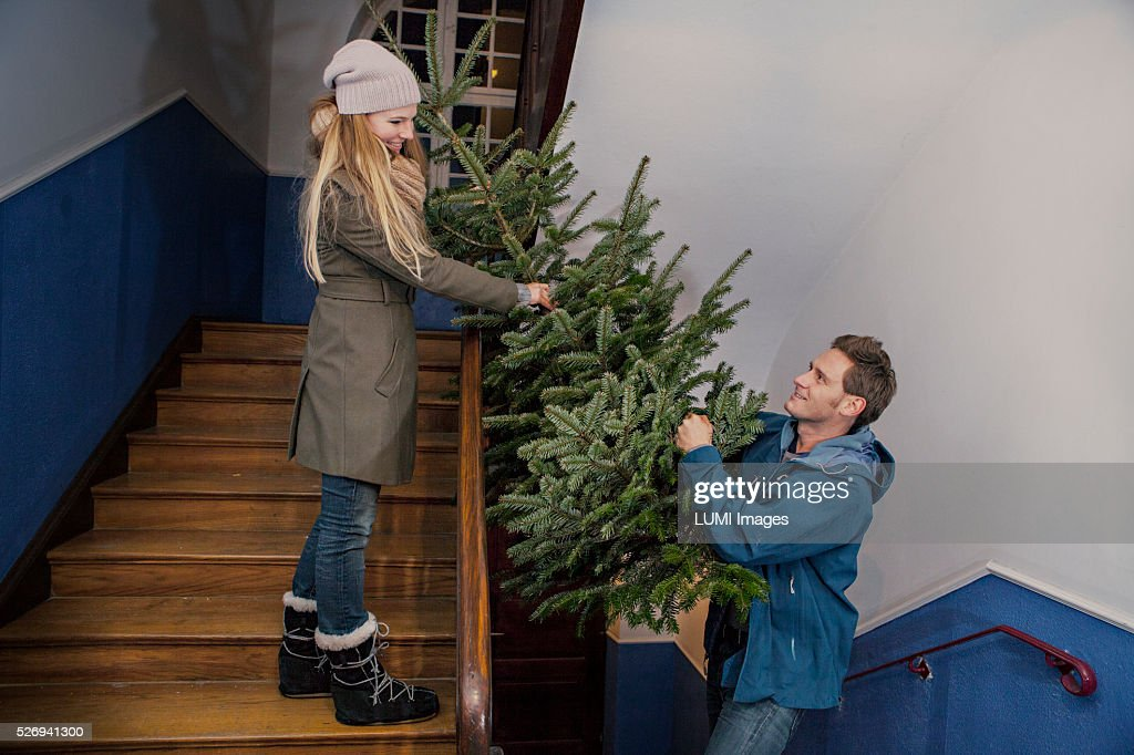 Couple carrying their Christmas tree home, Bavaria, Germany : Stockfoto