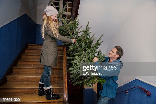 Couple carrying their Christmas tree home, Bavaria, Germany : Stock Photo