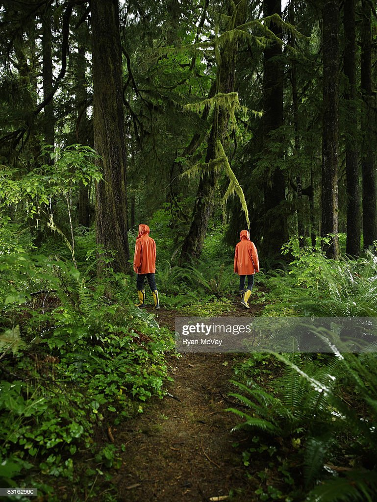Couple choosing different paths on forest trail. : Stock Photo