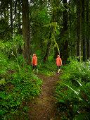 Paar Wählen Sie verschiedene Pfade auf den Wald.