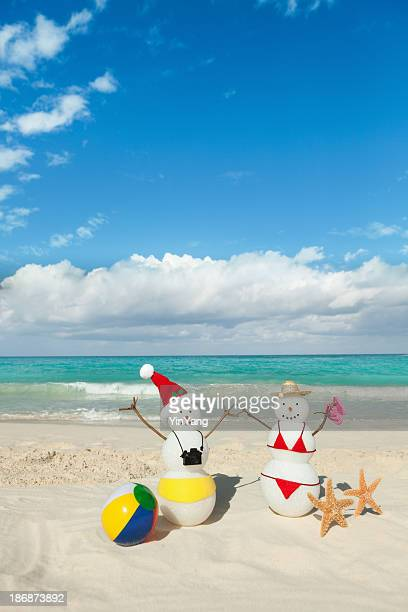 Couple Christmas Vacation in Tropical Beach of Caribbean Sea Vt