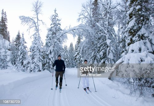 Couple cross-country skiing in forest : Stock Photo