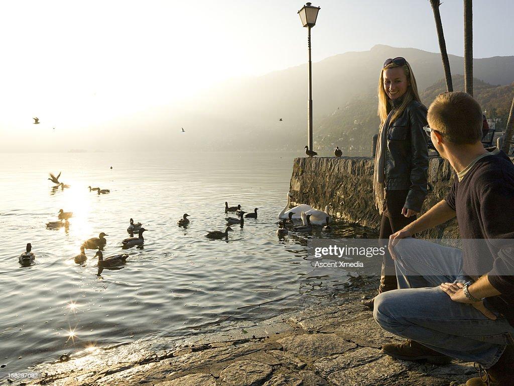 Couple descend on stone walkway to lake edge,birds : Stock Photo