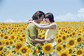 Couple embracing in sunflower field, foreheads touching, side view