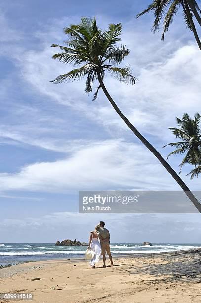 Couple embracing next to palm tree on beach