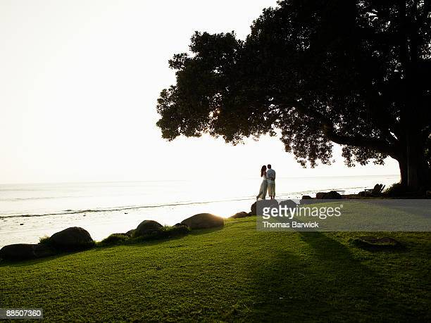 Couple embracing under tree looking out at ocean