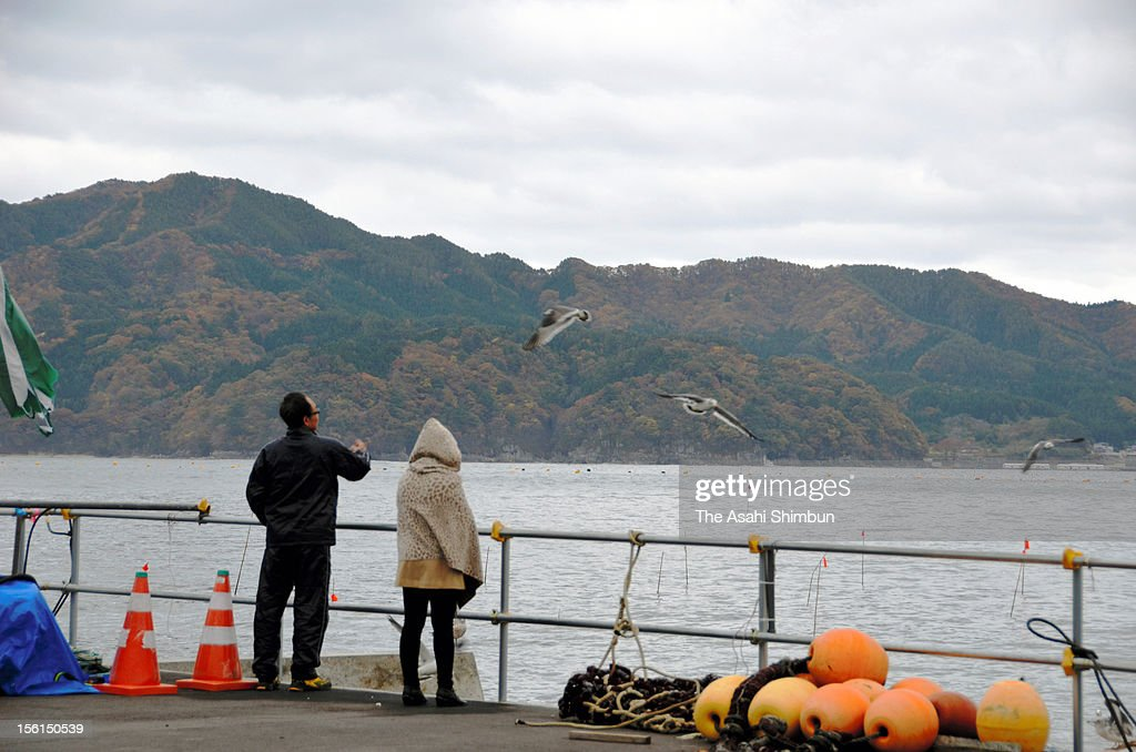 A couple from Hanamaki, who lost his 22-year-old son by the tsunami, throw baits to seagulls on November 11, 2012 in Otsuchi, Iwate, Japan. Japan marks 20 months anniversary of the Great East Japan earthquake and following tsunami, occurred on March 11, 2011.