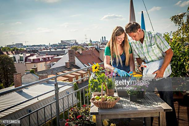 Couple Gardening On Balcony, Munich, Bavaria, Germany, Europe