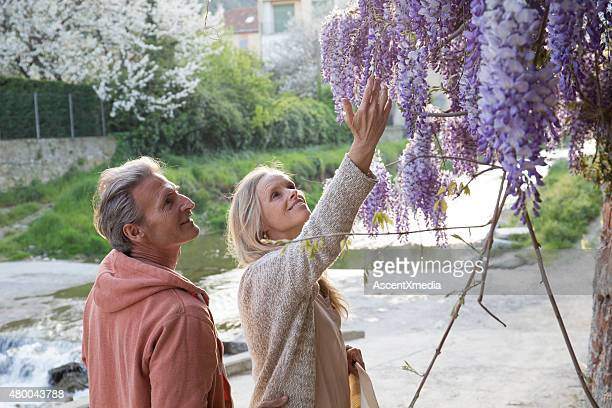 Couple gaze up at flowers in Liguria, Italy.
