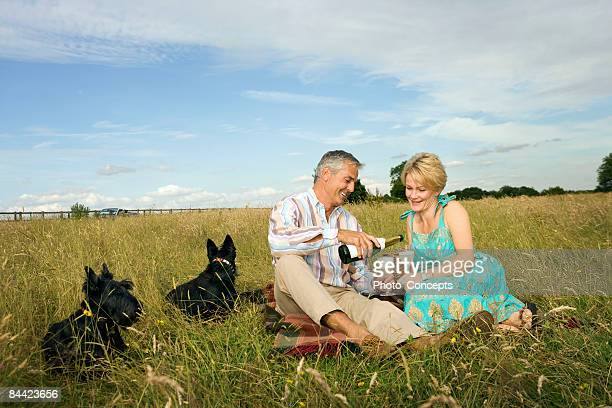 Couple have a picnic in a field