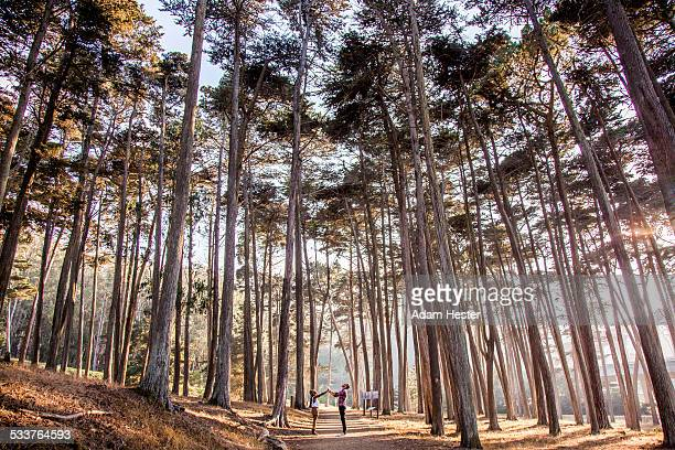 Couple holding hands under trees in forest