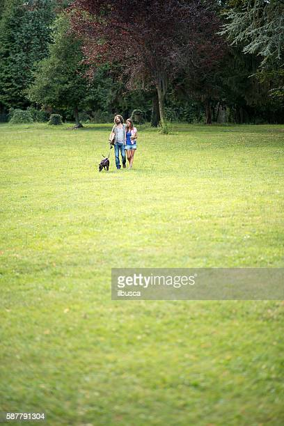 Couple in the park: Walking on grass with dog