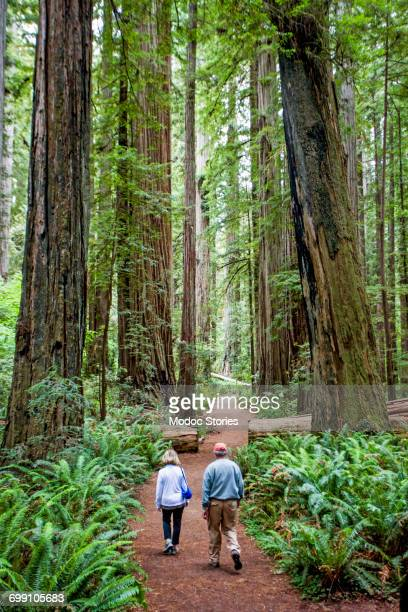 A couple in their 60s hike through the towering trees along a trail in Redwoods National Park, CA.