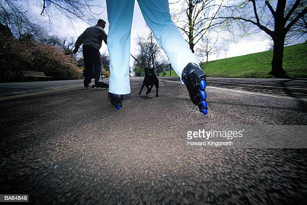 Couple inline skating in park with pet dog
