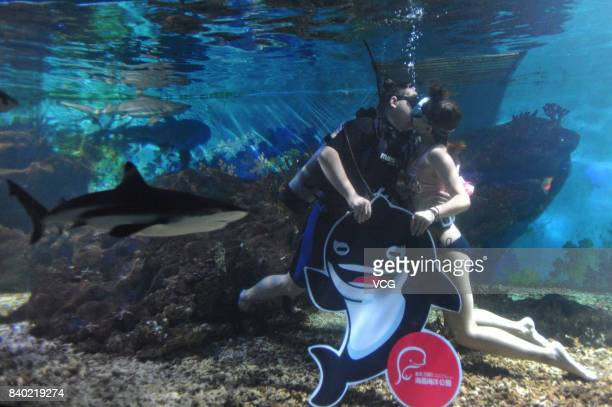 A couple kiss under water to greet the Chinese Valentine's Day at Haichang Polar Ocean park on August 28 2017 in Wuhan China The Qixi festival also...