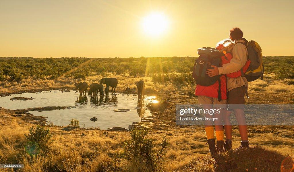Couple looking at elephants at watering hole at sunset, Etosha National Park, Namibia