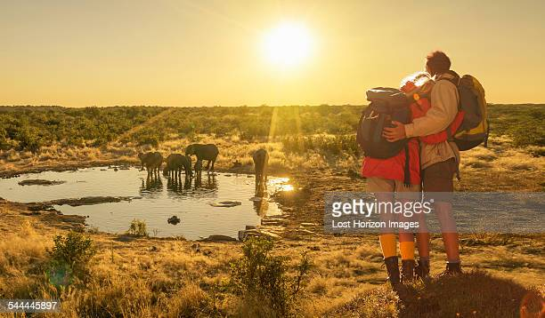 Couple looking at elephants at watering hole at sunset, Etosha National Park, Namibia